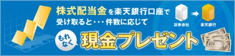rakutenbank_haito_program_20130108_01.png