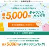 【終了】松井証券、口座開設で株式手数料 最大5000円キャッシュバックキャンペーン実施